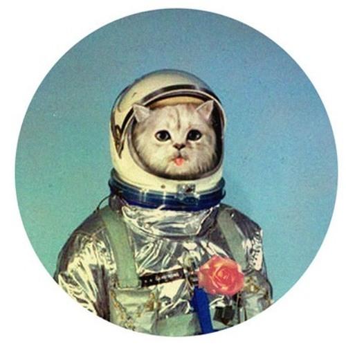 0187Sander's avatar