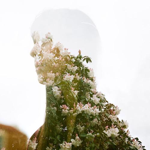 Diana Lorena Rz's avatar
