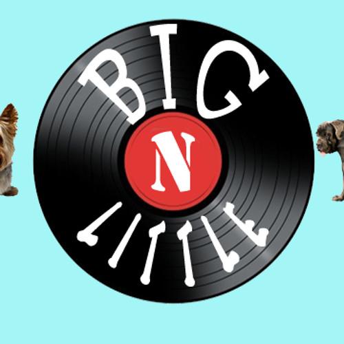DJBigNLittle's avatar