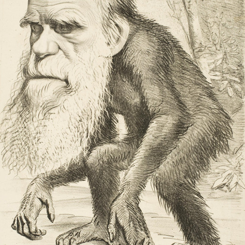 Barteld de Jong's avatar