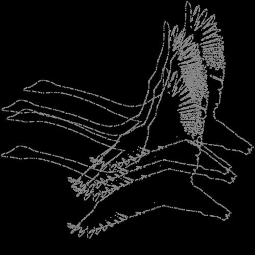 ORANGE SWAN's avatar