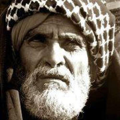 Muhammad Abd-Allah Aamer's avatar