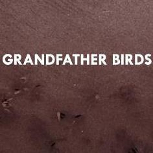 grandfather_birds's avatar