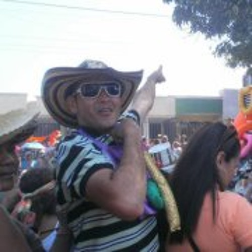 Jose Luis Vizcaino Polo's avatar