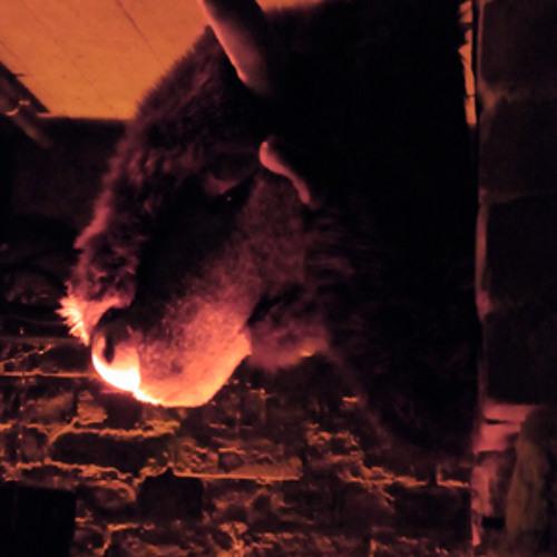 Where The Buffalo Roam's avatar