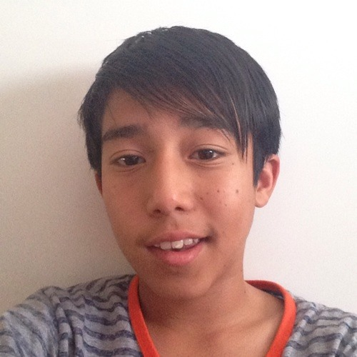 Sajed Qasemi's avatar