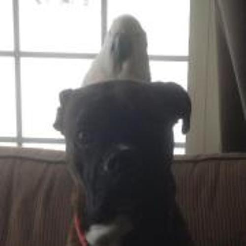 Jacki Hughes 1's avatar