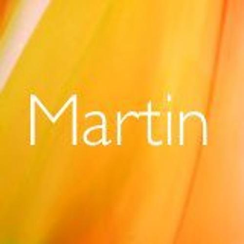 Martin Fehlig's avatar