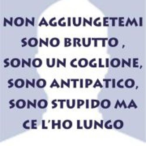 Leonardo Ferri 1's avatar