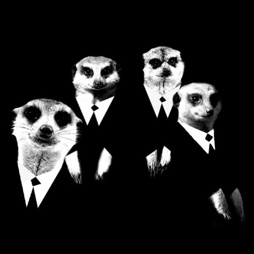 The Meerkat Troops's avatar