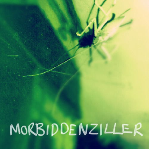 Morbiddenziller's avatar