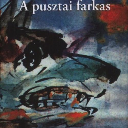 pusztaifarkas's avatar