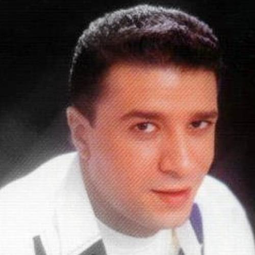 mostafa kamel's avatar