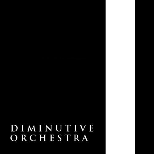 Diminutive Orchestra's avatar