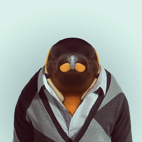 hereliesvince's avatar