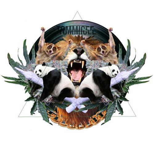 TMICEE's avatar