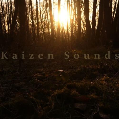kaizen sounds's avatar
