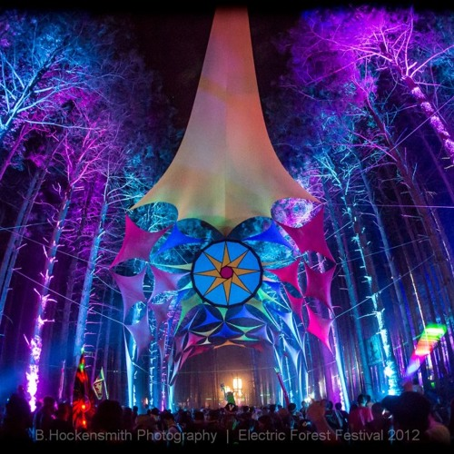 Electric Forest 2013's avatar