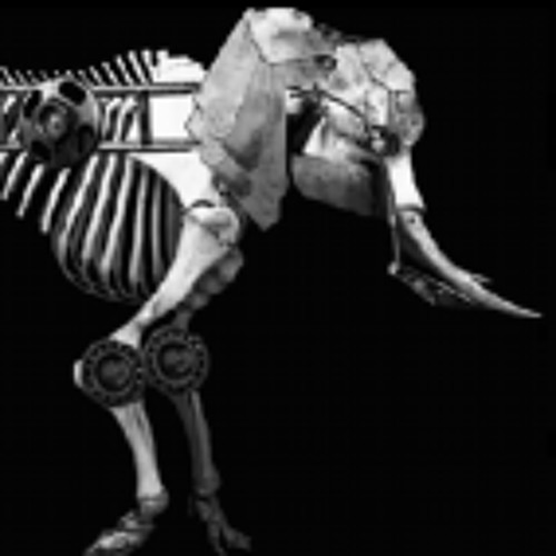 Stagediving Elephants's avatar