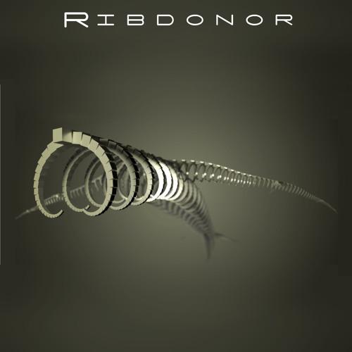 Ribdonor's avatar