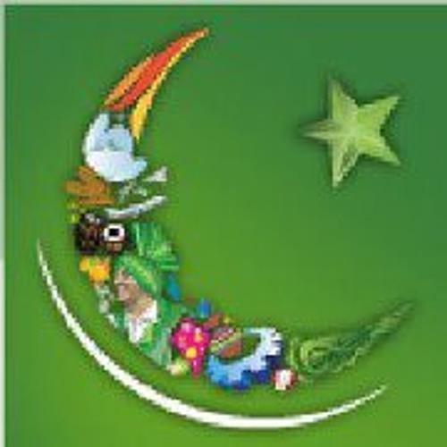 Zaid Bashir's avatar
