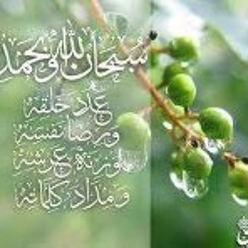 Saif Al-Islam's avatar