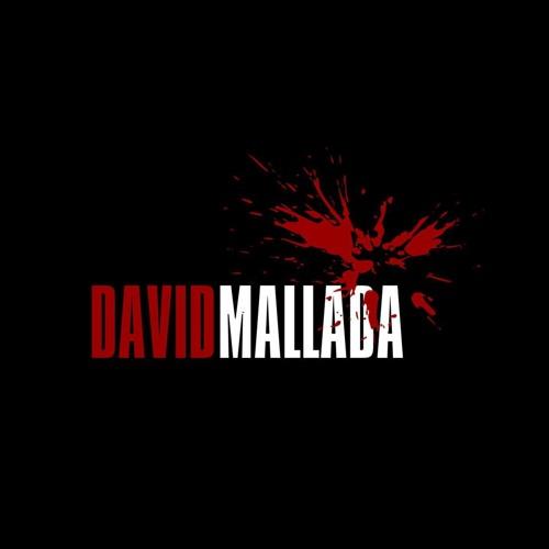David Mallada TechnoFlash 2013
