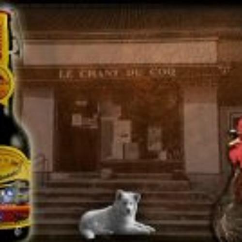 Bar le Chantducoq's avatar