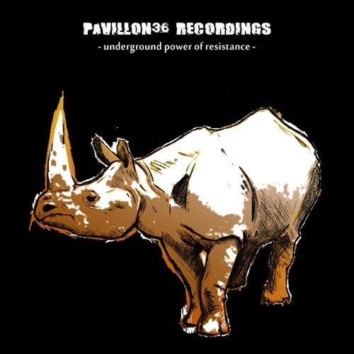 Pavillon36 Recordings's avatar