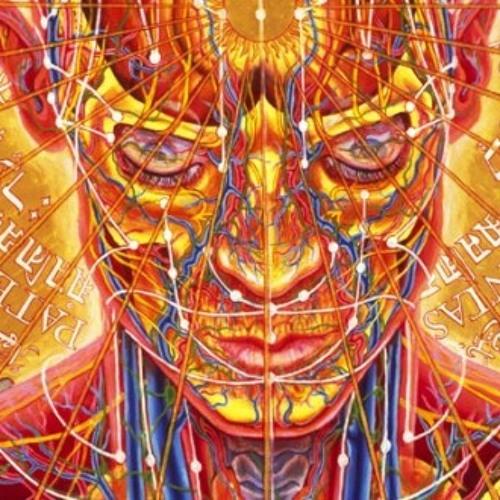 synesthetic's avatar