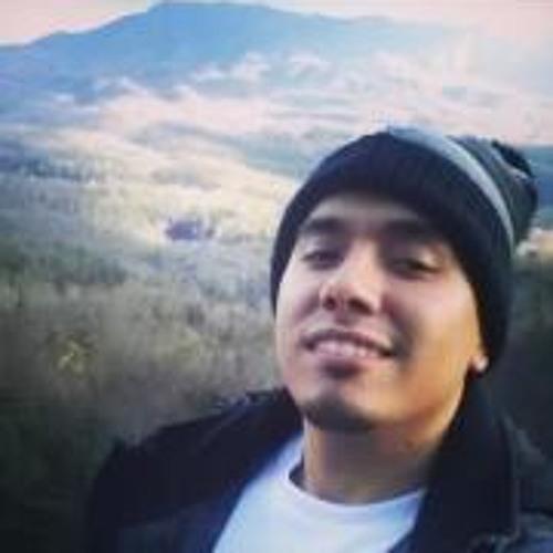 Luis Senges's avatar