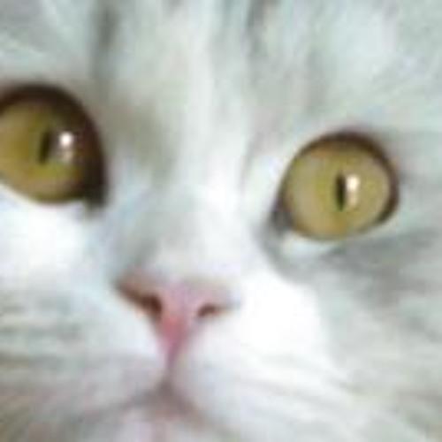 Hala Elmiligy's avatar