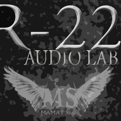 Room22 Audiolab's avatar