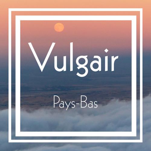Vulgair Pays Bas's avatar