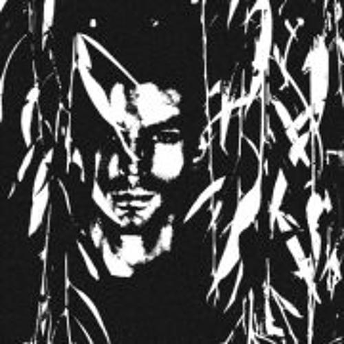 Igor Drakulic's avatar