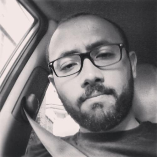 Mahmoud Abdalla Flippo's avatar