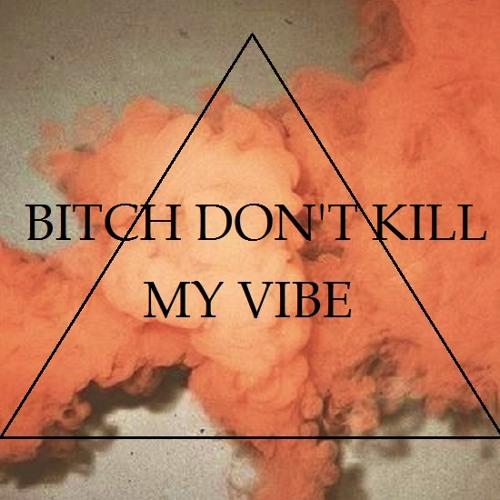 Bitch don't Kill my Vibe's avatar