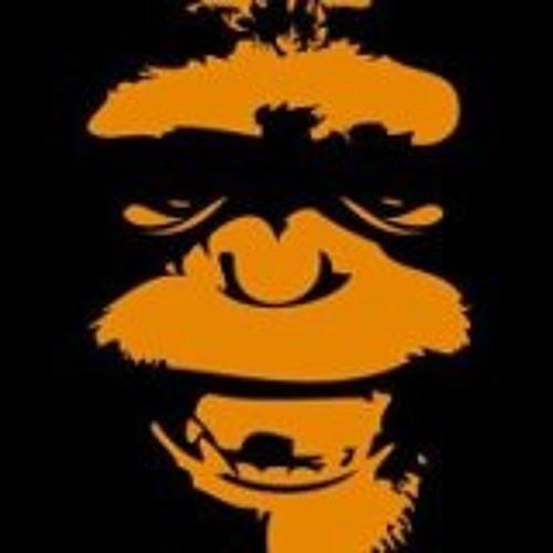 Bonobo Circus's avatar
