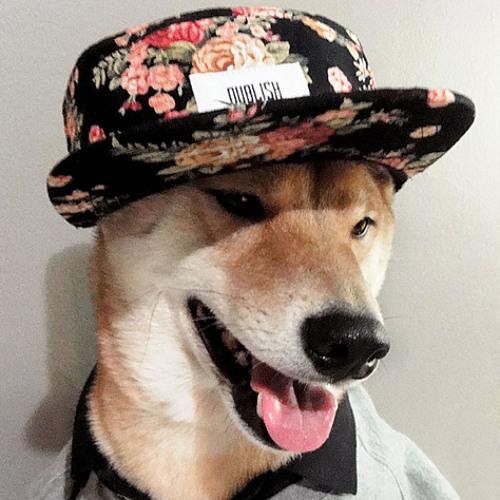 The Beatfarm's avatar