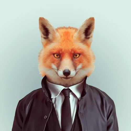 Fred Fox's avatar