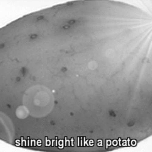 Dirtier Potato's avatar