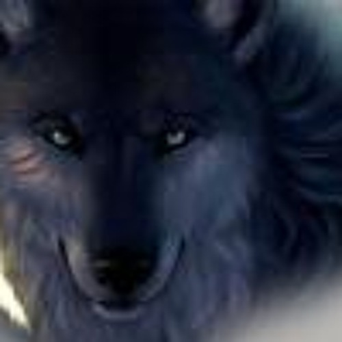 Darius Dexter Agenbag's avatar