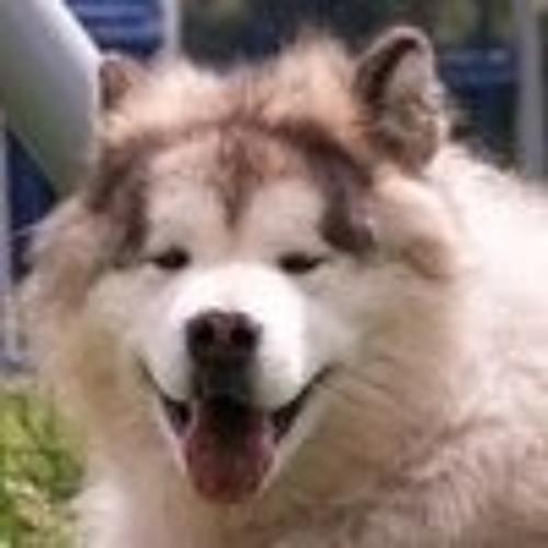katsukenny's avatar