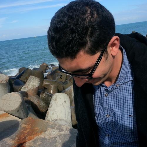 Ahmed Ashraf Elhefnawy's avatar