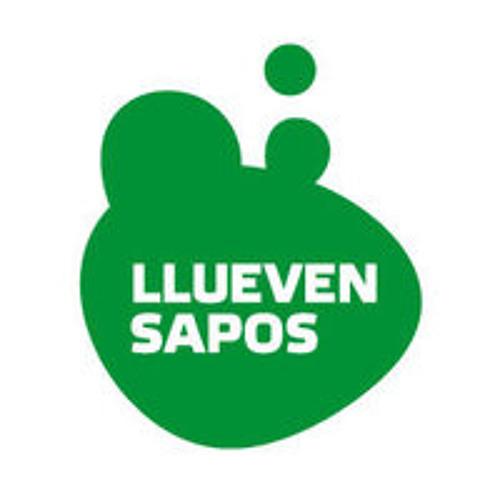 Llueven Sapos's avatar