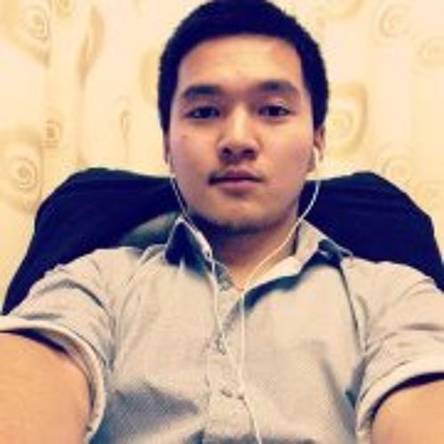 Boldoo Be's avatar