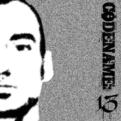 Codename:13's avatar
