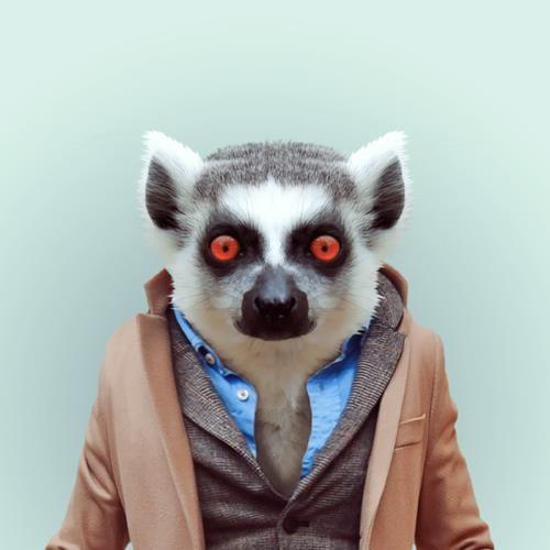 Alejandro Zaiitron's avatar
