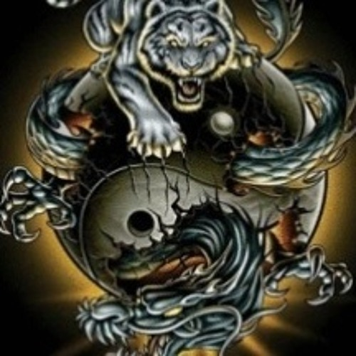Dush Piyadigamage's avatar