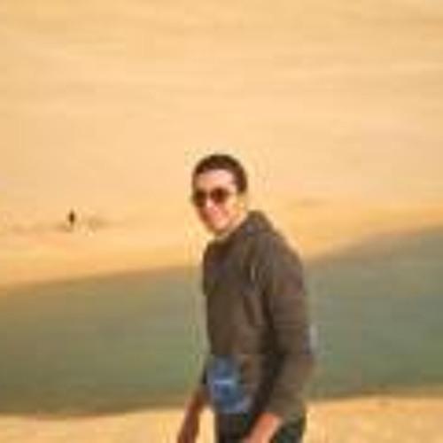 Haytham Ahmed Gameel's avatar